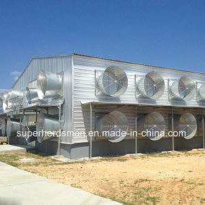 Light Steel Prefab House for Poultry pictures & photos