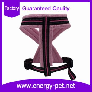 Nylon Comfortable Padded Pet Dog Harness pictures & photos