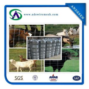 2.5mm Cattle Metal Farm Fence / Deer Farm Fencing, Field Fence, Cattle Fence pictures & photos