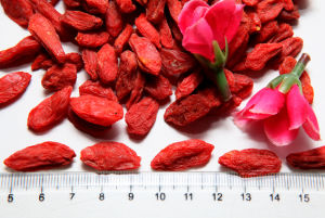 Ningxia Dried Goji Berry Wolfberry--380grains/50g pictures & photos