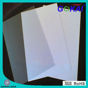 Professional PVC Foam Board Supplier pictures & photos