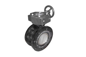 German Standard-Double Eccentric Double Flanged Butterfly Valve pictures & photos
