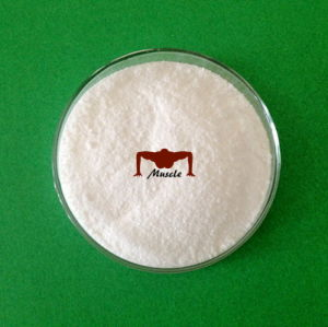 Isotretinoin CAS 4759-48-2 Raw Powder Pharmaceutical Chemical pictures & photos