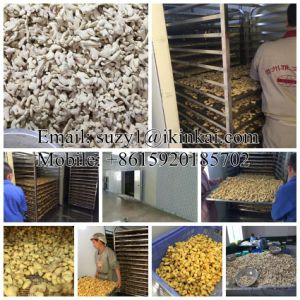 Professional Fruit Drying Equipment Fruit Dryer Machine Industrial Fruit Dehydrator pictures & photos