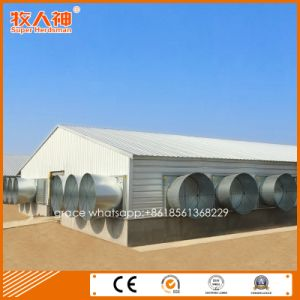 Professional Prefab Broiler Shed From Factory with Free Design pictures & photos