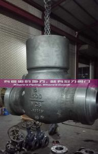 Pressure Sealed Swing Check Valve Ce, ISO Aprroved pictures & photos