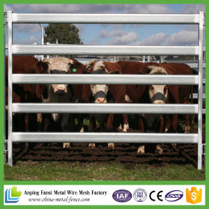 Wholesale Cheap Heavy Duty Livestock Panel for Australia Yard pictures & photos