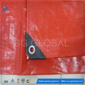 HDPE Coated Tarps in Different Colors and Sizes pictures & photos
