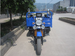 Motorized Tricycle Rickshaw pictures & photos