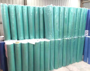 160g Fiberglass Mesh Fabric for Exterior Insulation pictures & photos