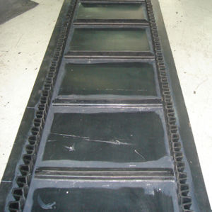 Sidewall Cleat Conveyor Belt (EP, NN, TC, XE) pictures & photos