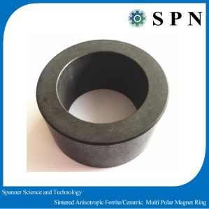 Permanent Ferrite Multipole Magnet Rings Customized pictures & photos