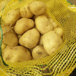 Fresh Potato with Good Quality From Jining Golden Longyuan pictures & photos