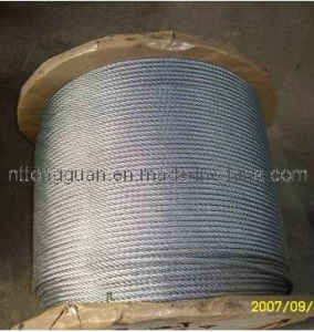 Tongguan Brand Galvanized Steel Strand 1*7 pictures & photos