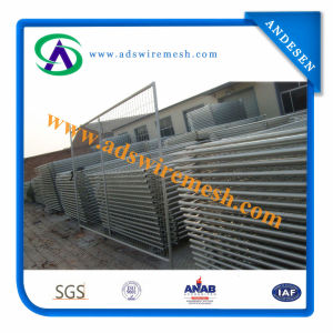 2400mml*2100mmh Temporary Fence, Temp Fence pictures & photos