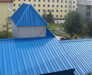 Gi, PPGI Roofing Sheet Versatile Steel Roof Panel pictures & photos