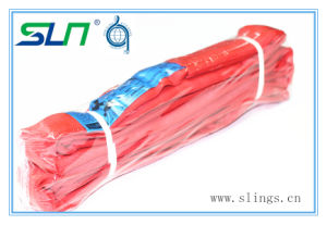 Sln Round Sling, Endless, 6 FT., 14000 Lb. pictures & photos