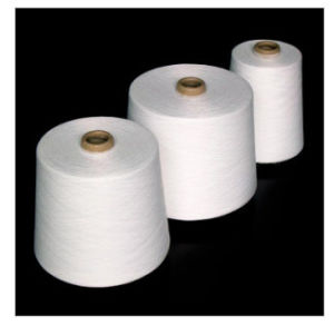 45s/1 T/C 90/10 Ring Spun Yarn for Weaving and Knitting pictures & photos