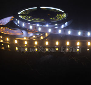 CE Approved Cool White and Warm White 5630 Flexible LED Strip with 1year Warranty pictures & photos