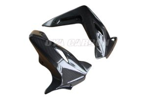 Carbon Fiber Cover Water Radiator and Frame for Mv Agusta Brutale 920 pictures & photos