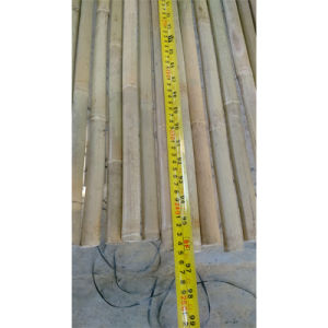 Bamboo Sticks From Natural Bamboo for Sale pictures & photos