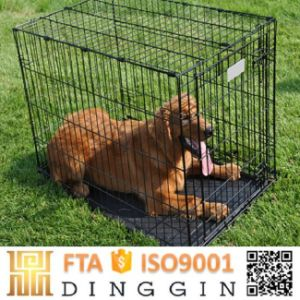 Two Doors Pet Home with ABS Tray for Sale pictures & photos