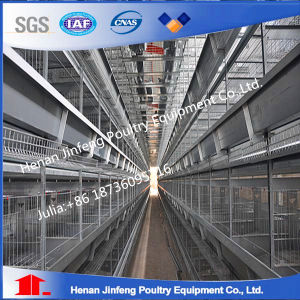 H Type Chicken Layer Cage Sold in Europe pictures & photos