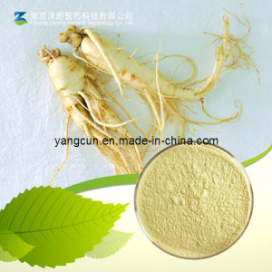 Ginseng Extract Ginsenoside UV 80% Rg1 Rg2 Rg3 pictures & photos