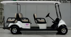 Dongfeng Best Electric Golf Cart for 6 Person with CE Certificate for Sale