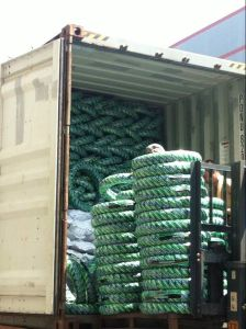 Hot in Philippines Market 130.60.13 6pr Tubeless Tire pictures & photos