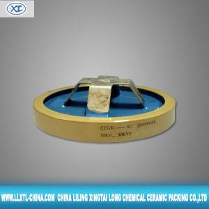 Ceramic CCG81 High Power High Voltage Ceramic Capacitor Disc Shape (XTL-RC10)