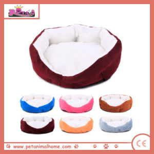 Small Size Pet Bed for Dogs pictures & photos