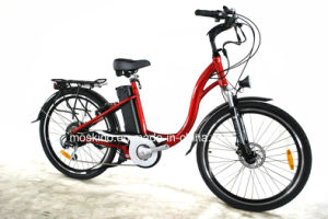 Italian Manufacturer Lithium Electric Bike (TDF01Z)