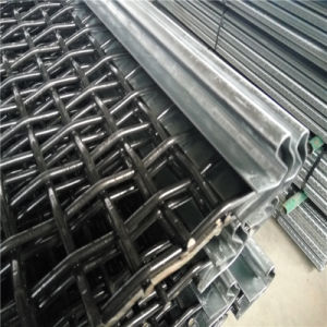 45# Steel Screen Wire/Vibrating Screen with Hook pictures & photos