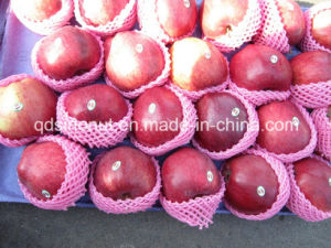 Huaniu Apple (size 80/88/100) pictures & photos