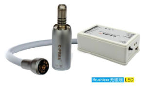 Dental Electric Brushless Micro Motor Built in Type C-Puma Int pictures & photos