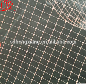 High Quality Two Side Plastic Geonet pictures & photos