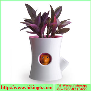 Self Watering Pot, Automatic Watering Flower Pot pictures & photos
