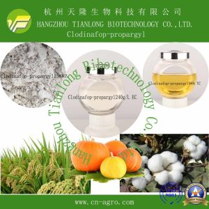 Good Quality Herbicide Clodinafop-Propargyl (96% TC, 80g/L, 240g/L EC, 15% WP) pictures & photos