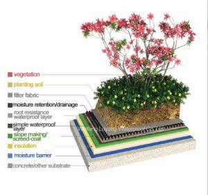 Sbs Modified Bituminous Waterproof Membrane for Roof Garden pictures & photos
