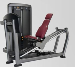 Fitness Equipment Seated Leg Press (XH903) pictures & photos