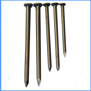 "1""-6"" Common Metal Nail for Wood pictures & photos"