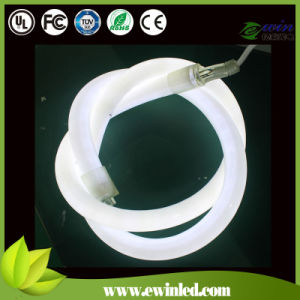 IP68 360 Degree Round LED Neon Light pictures & photos