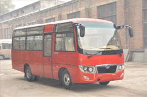 6.6mt CNG Bus