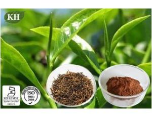 High Quality Black Tea Extract Theaflavin CAS No.: 4670-05-7 pictures & photos