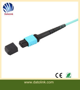MPO Singlemode Duplex Fiber Optic Patch Cable pictures & photos