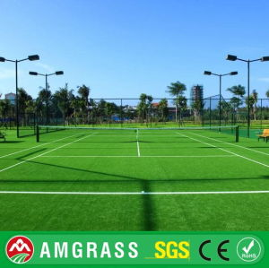Tennis Synthetic Turf Indoor Sports Court pictures & photos