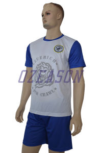 Customized Your Own 100% Polyester Sports Soccer Shirts (S029) pictures & photos