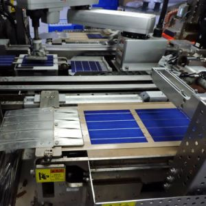 Tier 1 World Famous Brand Wholesale Price Yingli Solar Yl255p 29b pictures & photos
