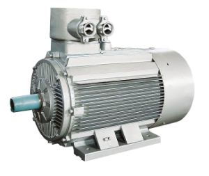 Electric Motor/ Ex Motor/ Motor/ Mine Motor pictures & photos